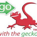 Go With The Gecko Profile Picture
