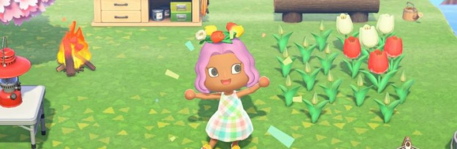 The virtual money in Animal Crossing Cover Image
