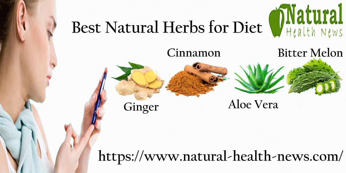 What Is Herbs and How Can it Control Diabetes?