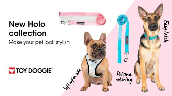 Look for the Ideal Cute Dog Clothes at Toy Doggie - Toy Doggie Brand   Tealfeed